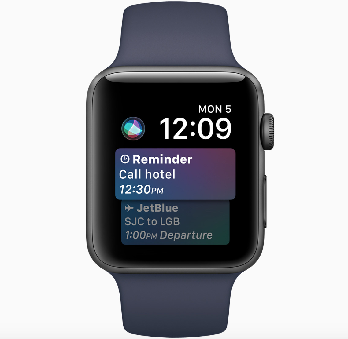 Siri Apple Watch Face